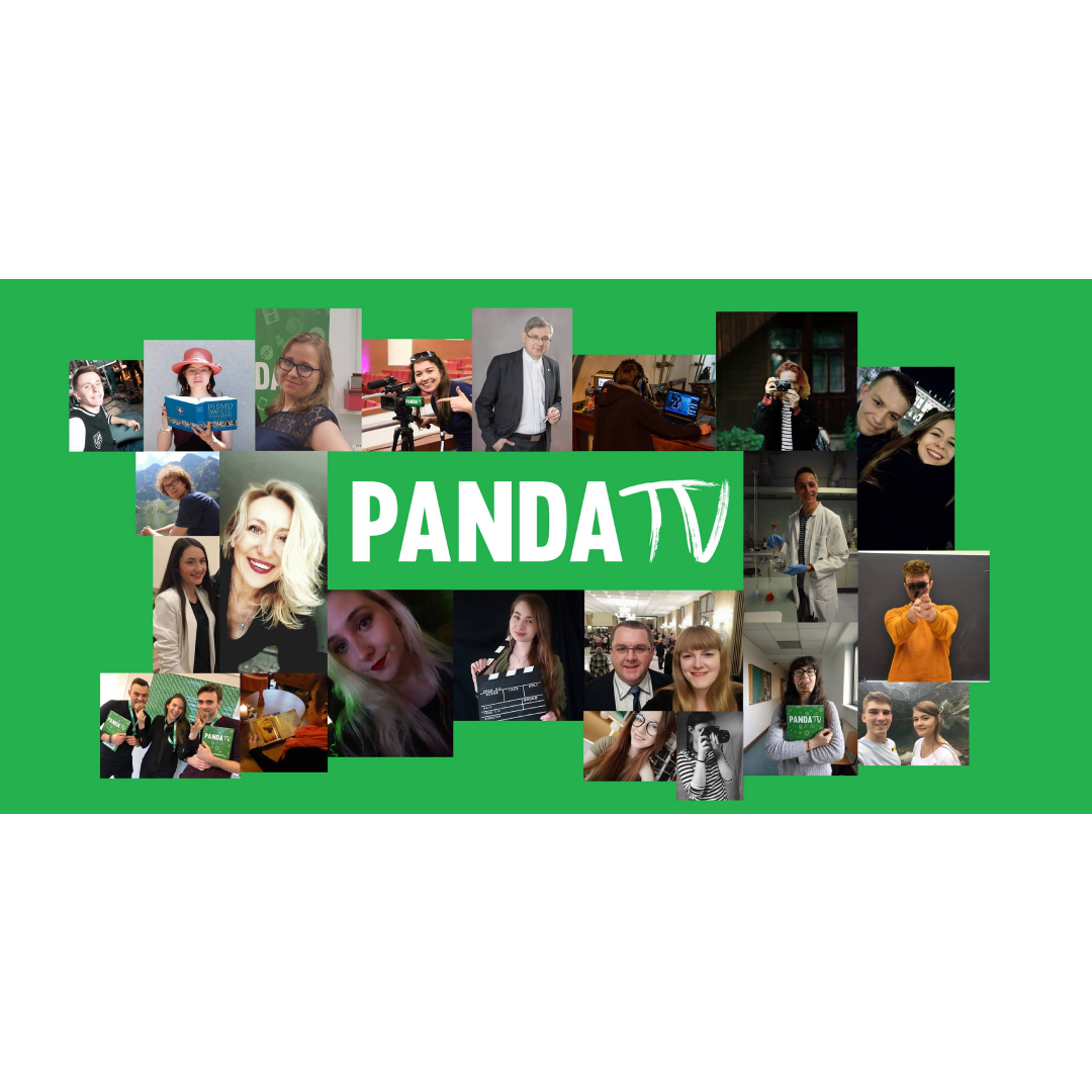 Telewizja Internetowa bez tajemnic – PandaTV.pl